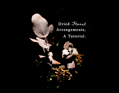 Dried Florals Photography
