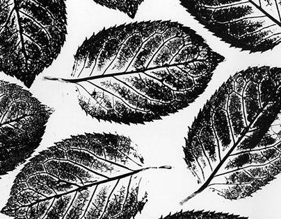 Ink, Roller & Leaves.