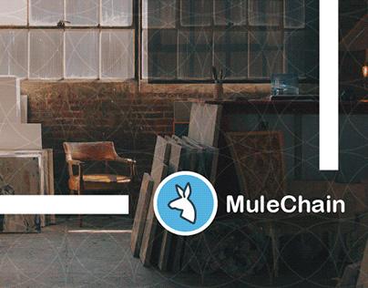 MuleChain: Social Media Marketing Campaign
