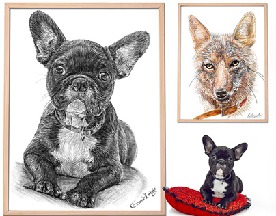 Etsy Cover - Custom pet portraits