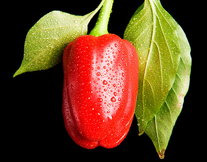 Red Sweet Russian Peppers