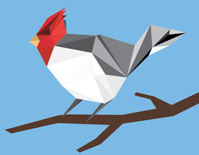Low Poly - Red Crested Cardinal