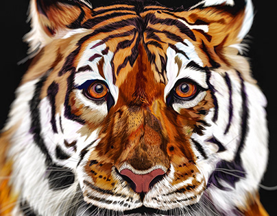 Illustration: Tiger