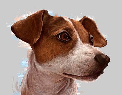 Dog portraits Vol2