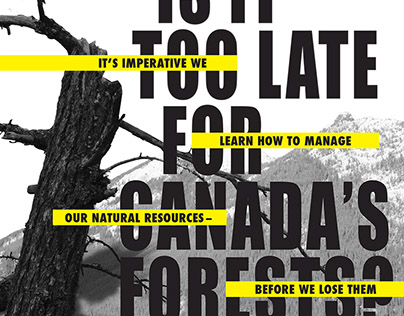 Forest Magazine Spread
