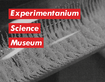 Supreme tribute t-shirts for Experimentanium