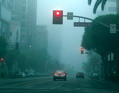 Foggy morning in Hollywood