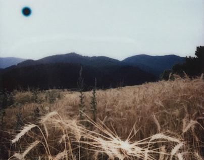 nature_landscapes