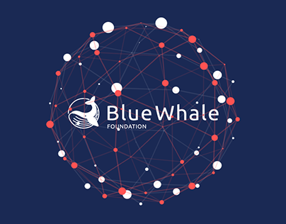 BlockChain Explainer | Blue Whale Foundation