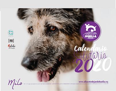 Calendario DHA 2020