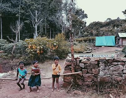 Kodaikanal (The Gift of the Forest) - Photo Series