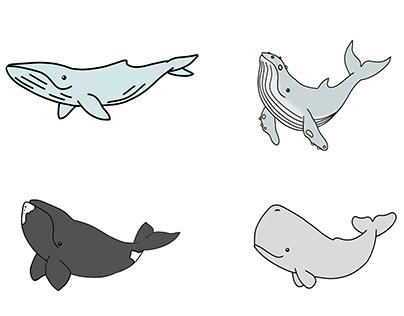 Cartoon Cetaceans - 2