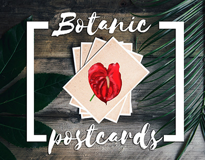 Postcards | postales