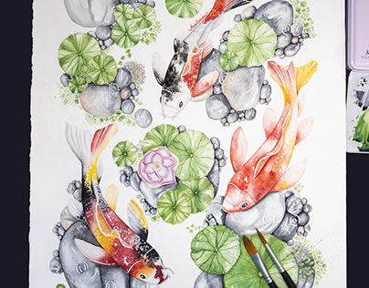 Koi Fish Illustration - Work in Progress, Part II