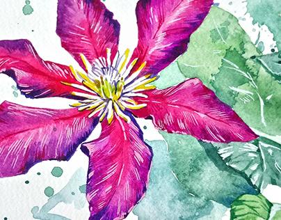 watercolor sketch flower