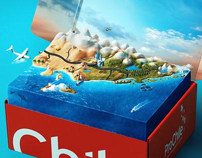 ProChile   Young Rubicam Chile