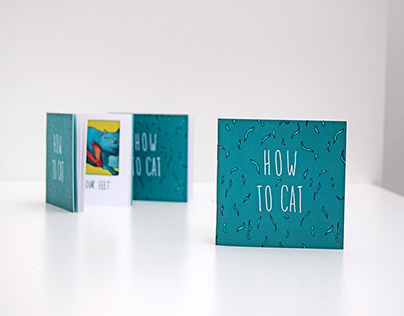 How to Cat - an illustrated guide to feline usage.