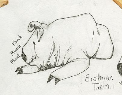 Sketchbook Dump #1