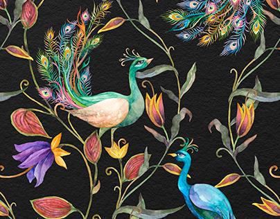 Elegant Peacock Illustration Set