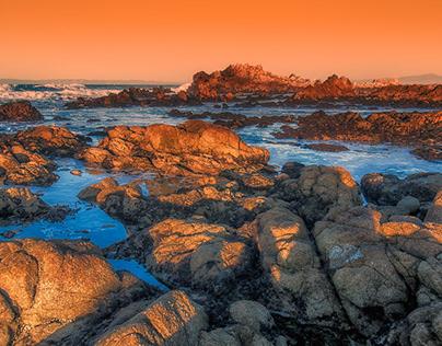 Shoreline - Pacific Grove