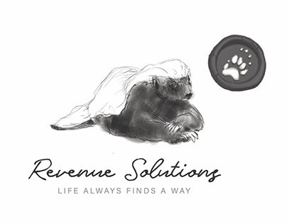 New Corporate Design for Revenue Solutions Namibia