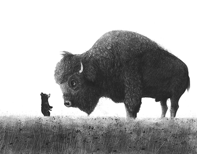 The little bear and the old buffalo