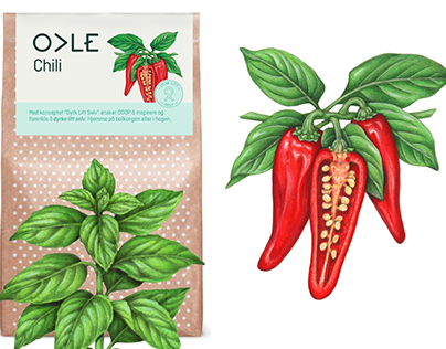 Vegetable and Herb Illustrations for COOP Norway