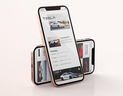 Redesign of the TESLA website