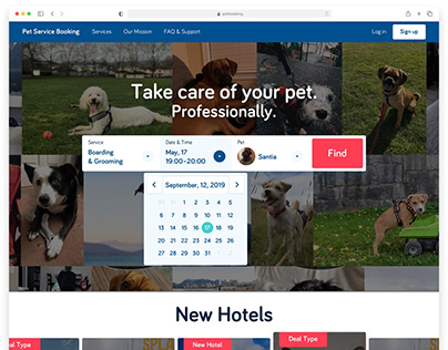 UI/UX, art direction for pet services booking website