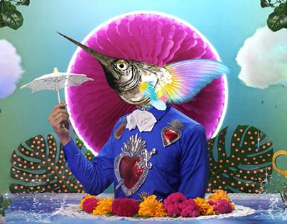 Cirque Du Soleil: L U Z I A