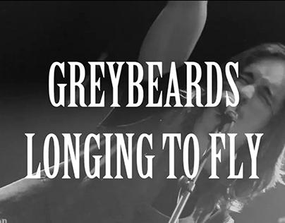 Projekt Greybeards