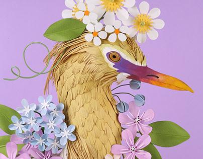 Egret portrait.