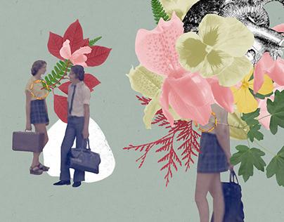 Illustration / Book Cover - Maria Luiza Maia