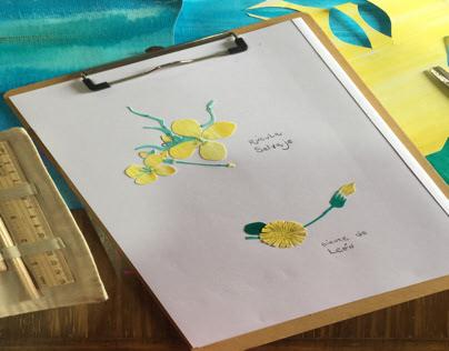 Collage inspiración botánica