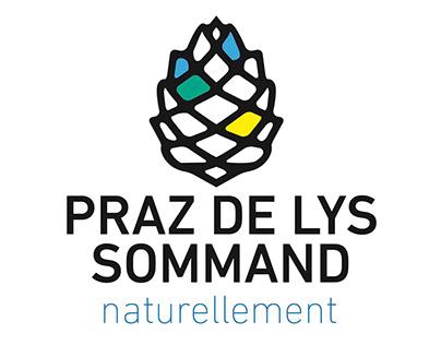 Etude identité visuelle station ski PRAZ DE LYS SOMMAND