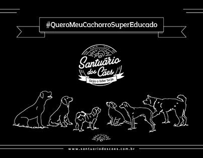 Curso Cachorro Super Educado - Santuário dos Cães