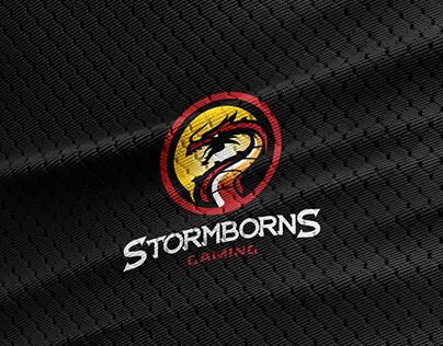Stormborns Gaming - Rebranding