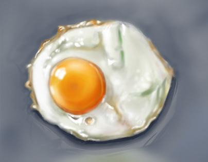 Material Study ( Egg )