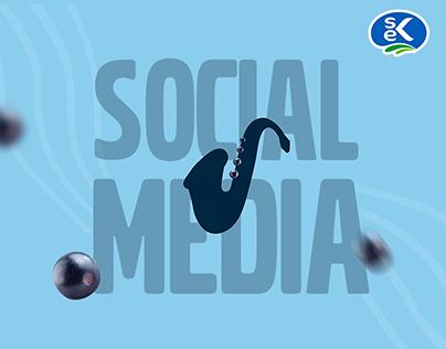 SEK - 2019 Social Media Designs