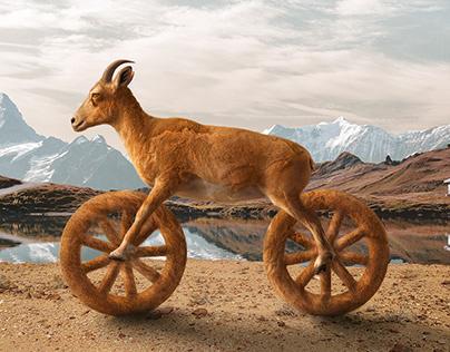 Velespit Bike Goat and Cheetah, Retouch and Design 2017