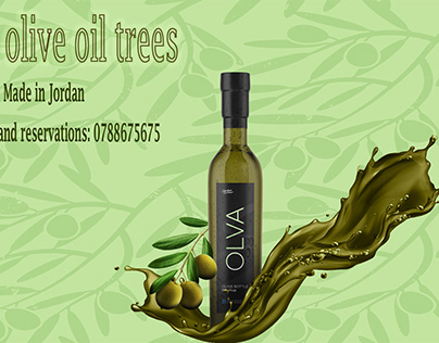 A project on olive oil
