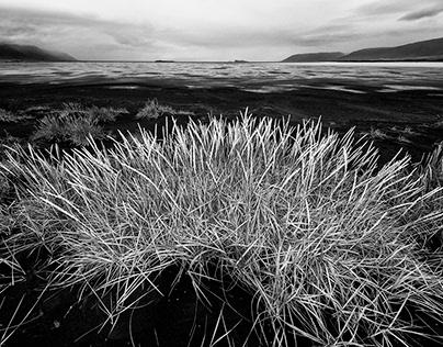 Low Tide - Iceland