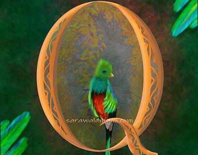 Q as in Quetzal