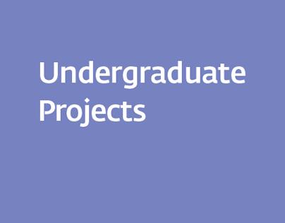 Undergraduate Projects
