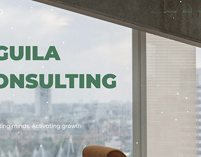 Aguila Consulting