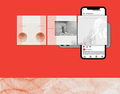 [social media/arts] Paço das Artes