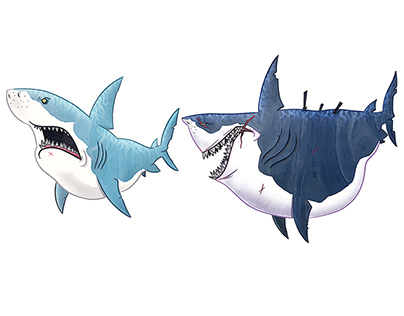 SHARKS SKETCHES