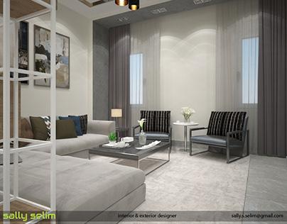 modern reception villa