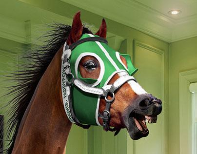 VIPP win a horse promo v2