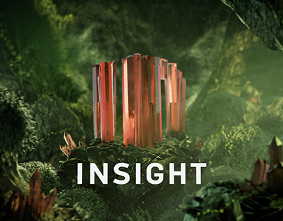 INSIGHT Bumper (Growth)